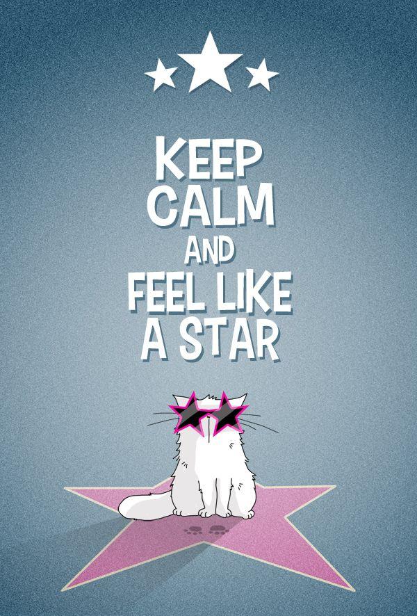 Keep Calm and feel like a cat... STARCAT