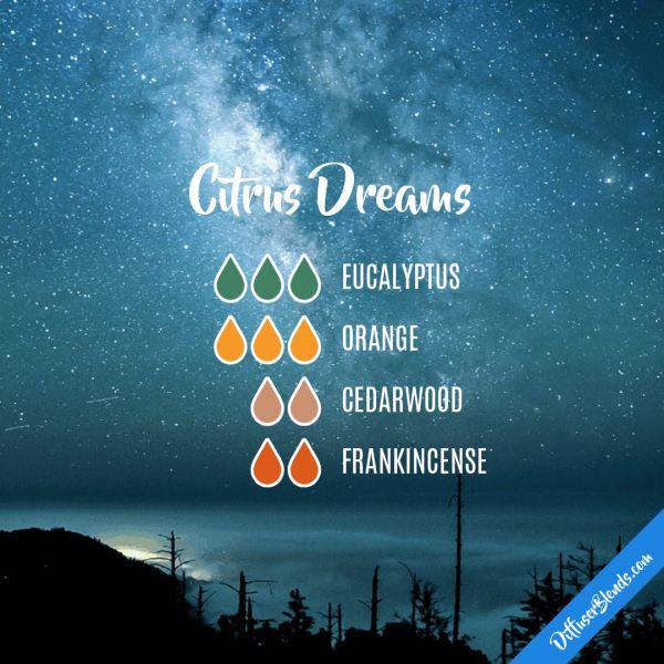 Citrus Dreams - Essential Oil Diffuser Blend