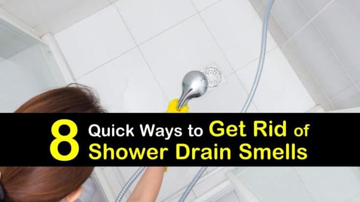 8 Quick Ways To Get Rid Of Shower Drain Smells In 2020 Shower Drain Smell Shower Drain Sewer Smell In Bathroom