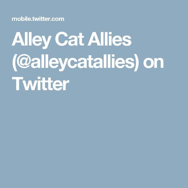 Alley Cat Allies (@alleycatallies) on Twitter
