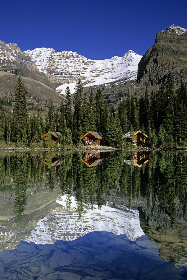 Sargents Point, Lake O'Hara, Yoho National Park, British Columbia :) cabins under the mountain. . . I wonder if you can stay in them