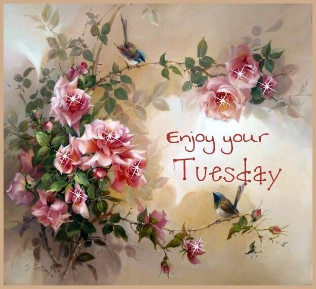 Enjoy Your Tuesday tuesday tuesday quotes happy tuesday tuesday images tuesday quote images