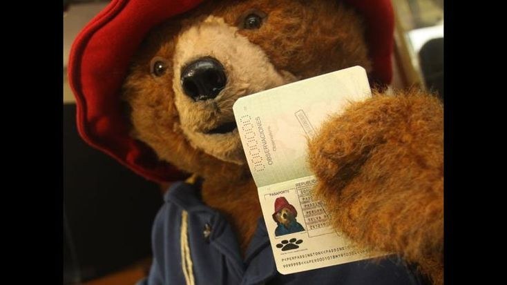 Oso Paddington renovó su pasaporte peruano