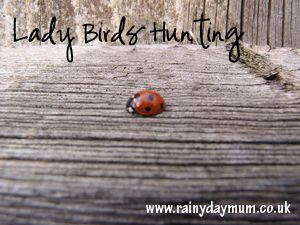 C D Dab Ea F D B Aa B likewise Ae A E E A Bb D together with Dbb D A C A Fad E C as well C Eb D Fad Eaed Cd E furthermore F F Caaeef D B B Fc A Activities For Insects Bugs And Insects Preschool. on insects and bugs spring mini unit for