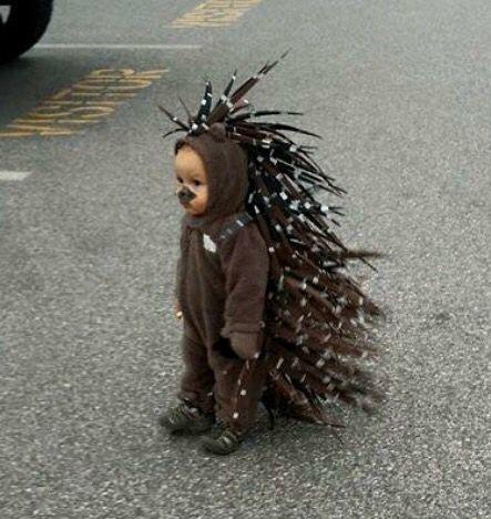 The cutest little porcupine (quills: paint & cut craft foam)