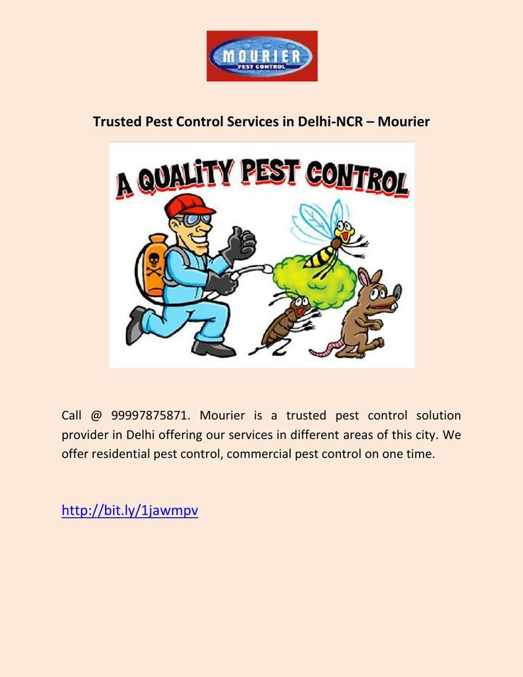 Trusted Pest Control Services in Delhi-NCR - Mourier  Call @ 99997875871. Mourier is a trusted pest control solution provider in Delhi offering our services in different areas of this city. We offer residential pest control, commercial pest control on one time.
