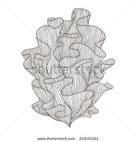 Abstract hand drawn illustration. Decorative design element. Vector sketch of coral. - stock vector