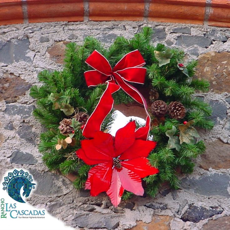 It's beginning to look a lot like Christmas...  Contact us at the Rancho to book your vacation today.