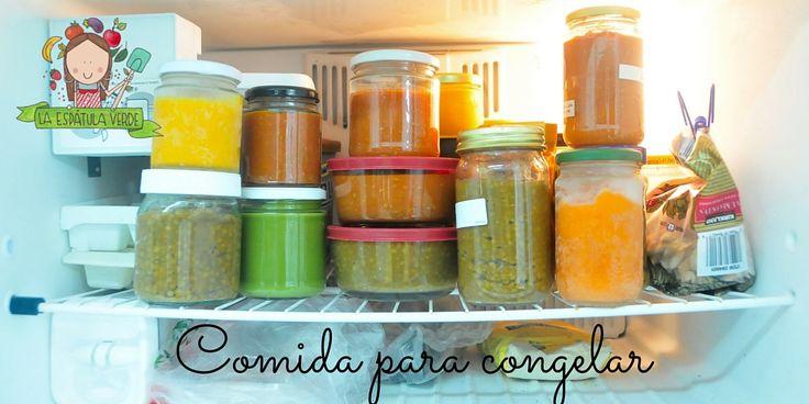 ideas para para congelar comida y disfrutar más de la vida.