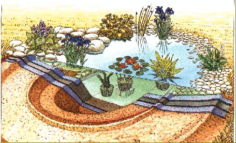 Les 124 meilleures images propos de jardin sur pinterest for Bassin ornement