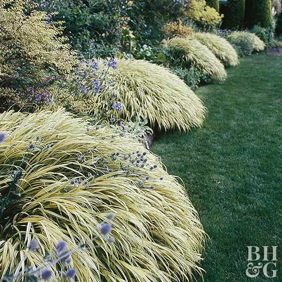 Edging your landscape creates a crisp, finished look.