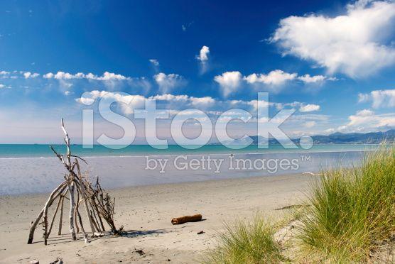 Rabbit Island, Nelson, New Zealand royalty-free stock photo