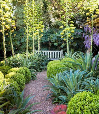 Drought Tolerant Garden Designs. Latest Best Plants Drought ...
