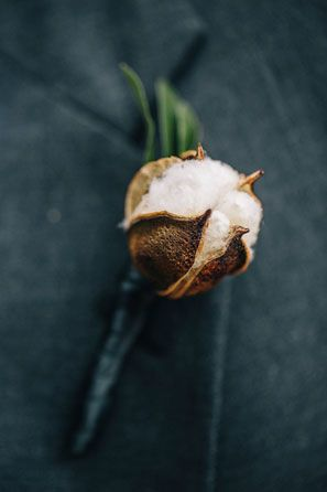 simple raw cotton boll groom's boutonniere