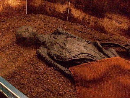 Bog body - Wikipedia, the free encyclopedia