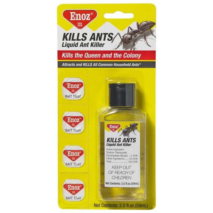 Enoz Kills Ants Liquid Ant Killer - 2.0 fl. oz