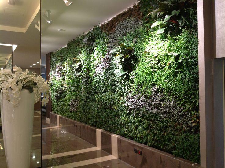 Oltre 1000 idee su giardini verticali interni su pinterest - Giardini verticali interni ...