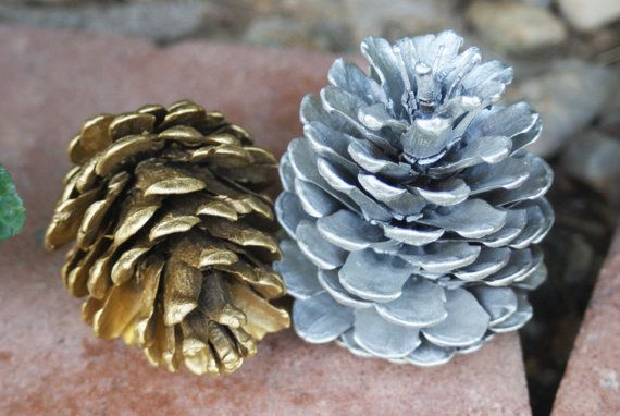 Silver and Gold Pinecones Natural Pinecones winter by Teakberry