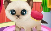 Hospital de Mascotas Bonitas - Un juego gratis para chicas en JuegosdeChicas.com