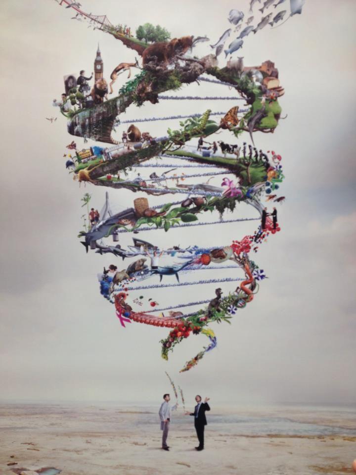 Me apaciona todo lo que tiene que ver con la genética, y es algo en lo que quisiera especializarme