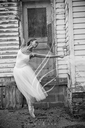 Angelic Aspirations - The Swan Dreams Project. Photographer- Paul D. Van Hoy II.