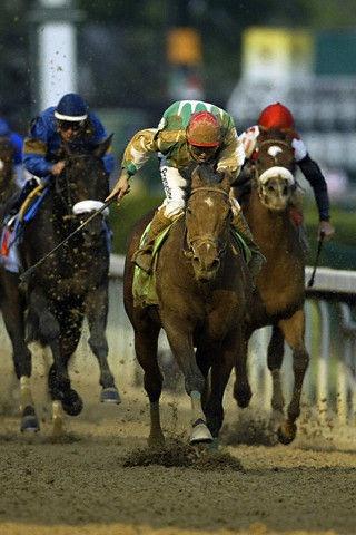 Afleet Alex,,,a game little horse!  I love him.  :)