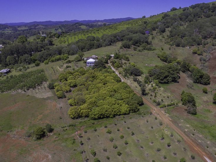 Exotic Tropical Fruit Farm  #Queensland #Amamoor #ForSale #FarmProperty #RealEstate