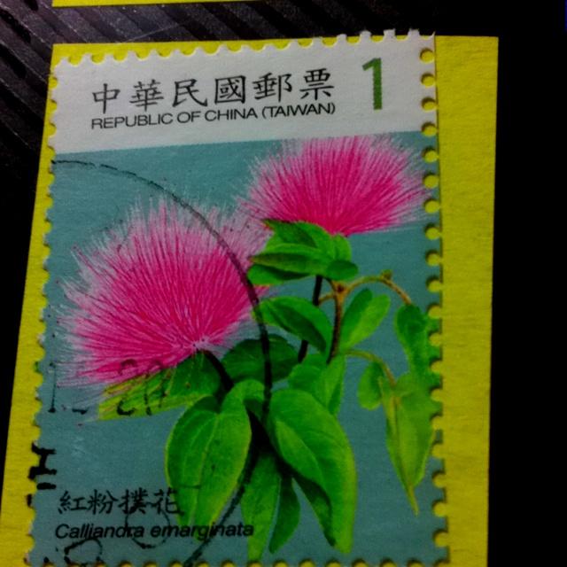 紅粉僕花, Taiwan