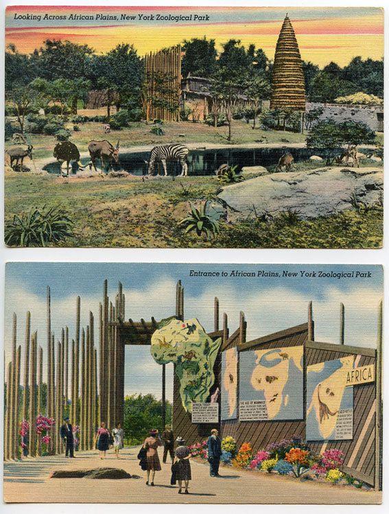 BRONX ZOO VINTAGE African Plains 2 Stunning Vintage Linen Postcards