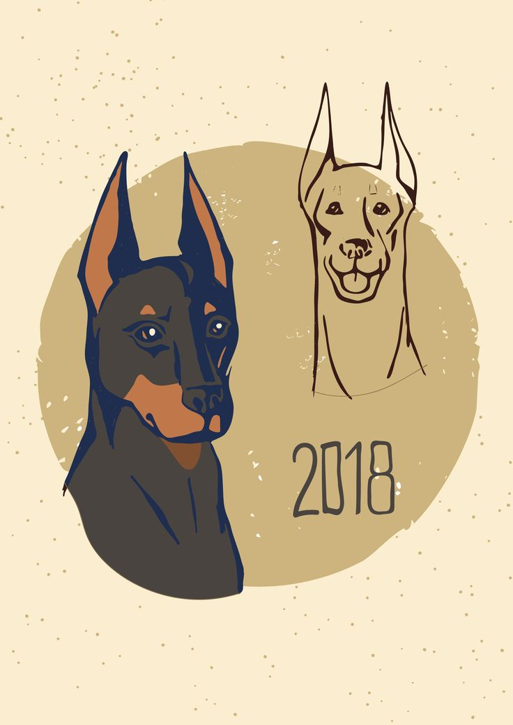 Abstract doberman dog head front view and 3/4 view. Cartoon stylish doberman portrait pattern background for design t shirt, veterinary clinic poster, gift card, bag print, advertising etc.