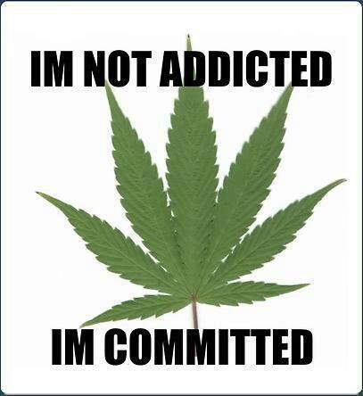 drugs leaves quotes marijuana - photo #2