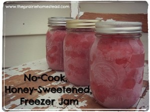 No-Cook Strawberry Freezer Jam with Raw Honey