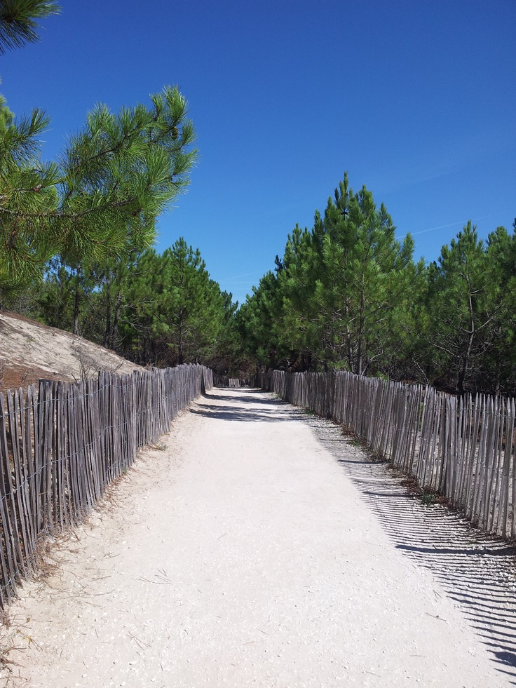 The walkway to the beach at our favourite French campsite
