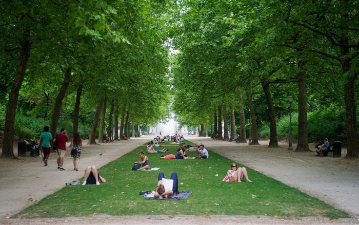 Scientists have discovered that living near trees is good for your health