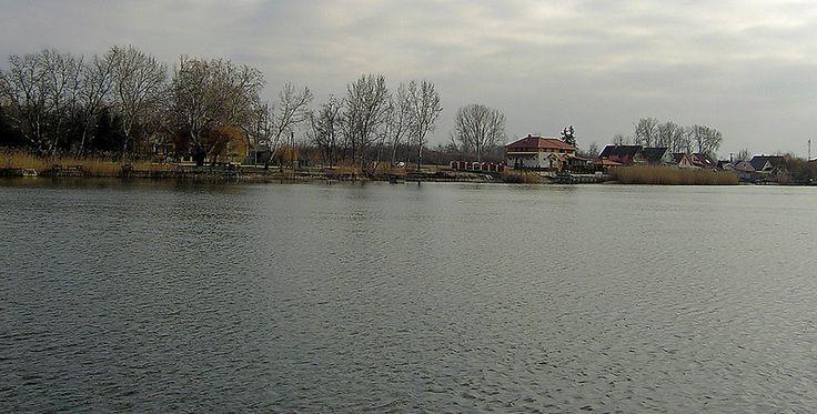 Dunavarsányi partrészlet