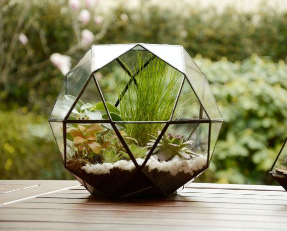 Large Glass Terrarium Glass Terrarium by NojaGlassDesign on Etsy - Top 25+ Best Large Glass Terrarium Ideas On Pinterest Glass