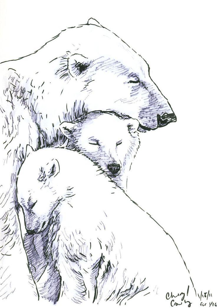 bear sketches | Polar Bear sketch by silvercrossfox on deviantART