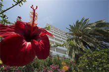 Jardines del Hotel Tres Anclas de la Playa de Gandia.