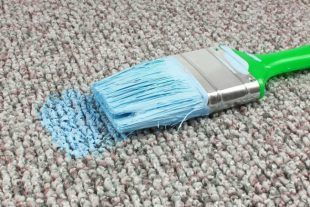 Did you accidentally spill some paint on your carpet? Don't freak out, just check out this great guide on how to remove paint from carpets