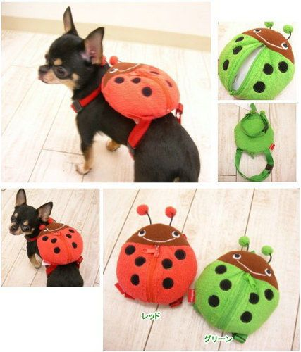 Pet Supplies Pet Clothes Dog Collar Harness with Lead Backpack with Lead Cute | …
