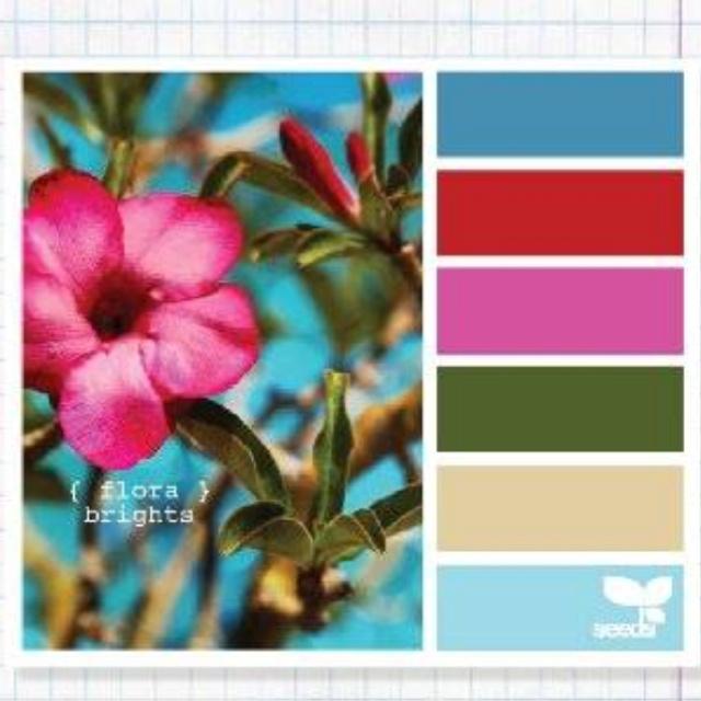 Flora brights color pallet