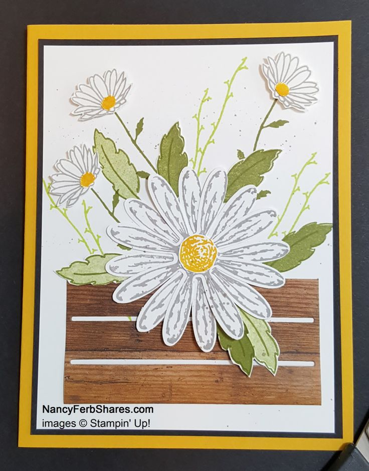 Cased: Daisy Delight Bundle from Stampin' Up!