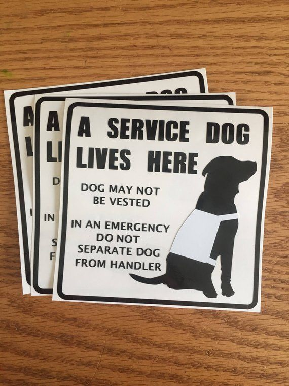 A Service Dog Lives Here Vinyl Decal Personalized Decal