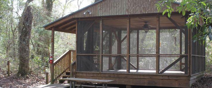 Sleeping Platform at Holton Creek River Camp