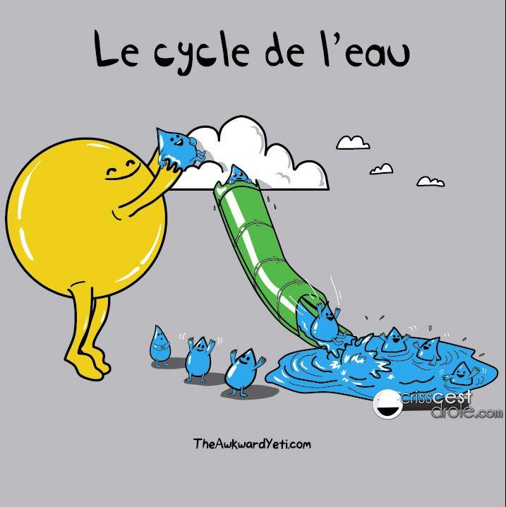 Le cycle de l'eau                                                       …