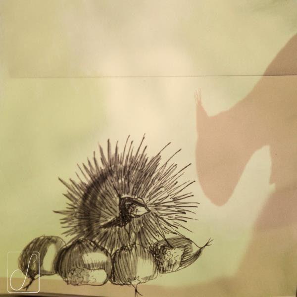 #unabellagiornata 293/365  #inktober2017 giorno 21  Castanea sativa - Narra la leggenda che le tenere castagne, stufe di esser predate dagli scoiattoli, chiesero aiuto agli amici ricci. Questi fecero loro da scudo con i loro aculei. I roditori ne uscirono talmente malconci che da allora tennero le loro vaporose code lontane da quei frutti. #inktober  #inktoberaduntratto #erbologiababbana #erbarium #sketchbook #shadow #chestnut #squirrel