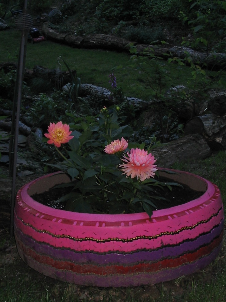 75 best images about tire chair project on pinterest - Painted tires for gardens ...