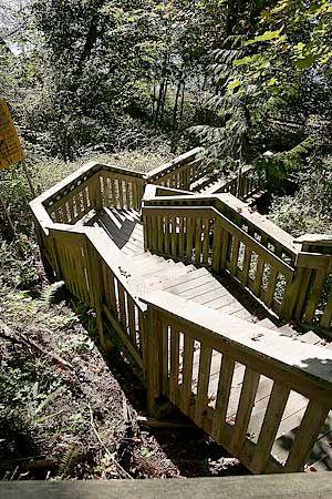 1001 Steps Park, Surrey