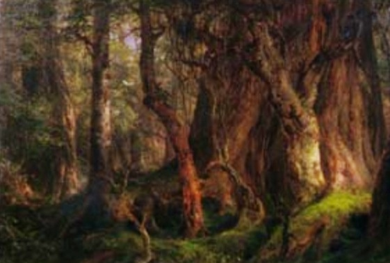 """Mexican Forest - a Composition by Frederic Edwin Church.  Updike describes this work as,  """" a crepuscular, even sinister study of tree trunks....""""  He notes it similarity to then ascendant Barbizon School."""