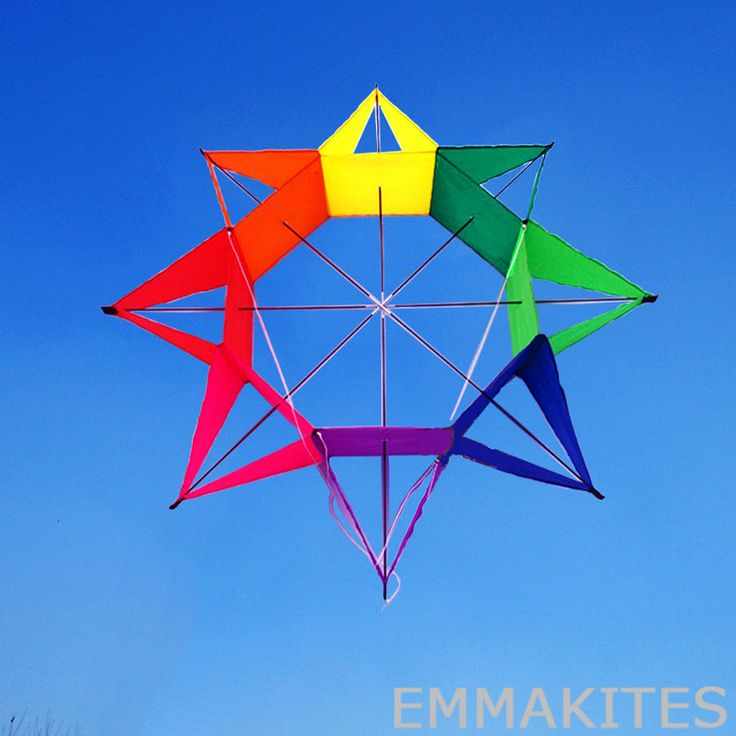 3D Rainbow Colorful Flower Kite Single Line Outdoor Toy Light Wind Flying Kids